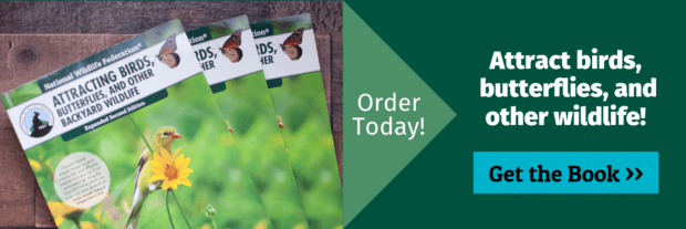 Order Today: Attract birds, butterflies and other wildlife! Get the book!