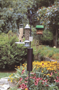 Birdfeeder among native plants