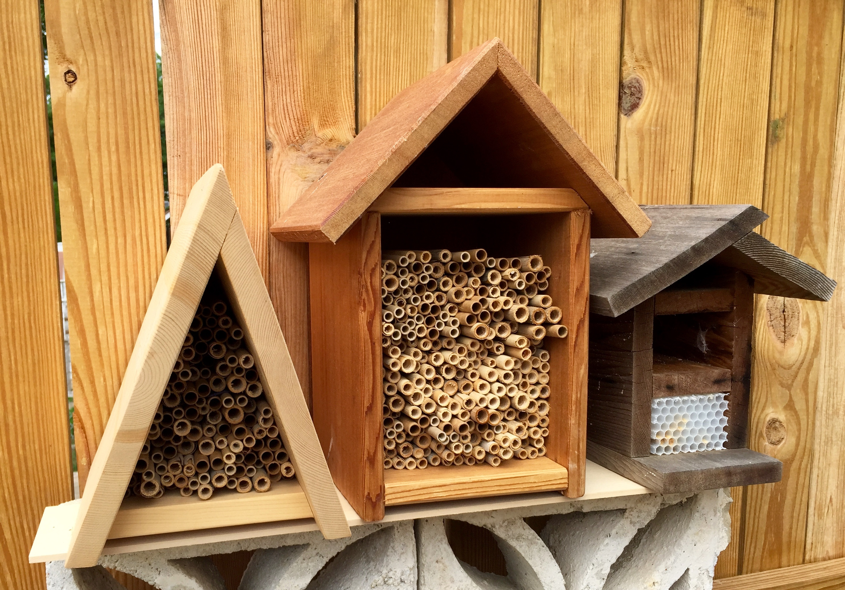 Add nesting boxes like these to give native bees a place to raise their young.
