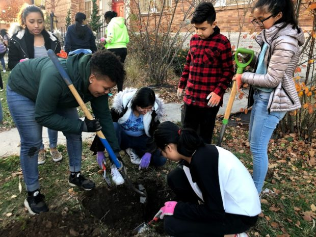 Climate education students plant trees.